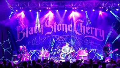 Photo of Review of Black Stone Cherry with Perry Hutchins at Joe's Live Rosemont!