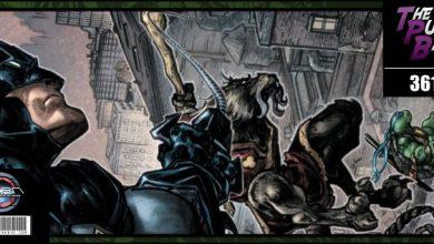 Photo of The Pull Bag – EP 361 – IDW and DC Comics – Batman – Teenage Mutant Ninja Turtles II