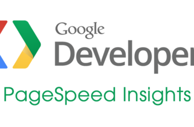 Google Developers PageSpeed Insights logo