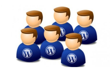 WordPress users