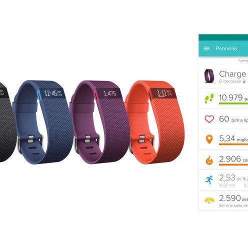 Smartband Fitbit Charge HR