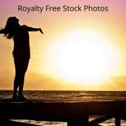 royalty free stock photos