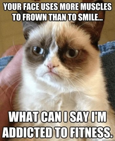 Grumpy Cat Addicted to Fitness Meme