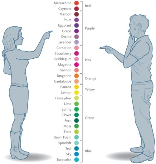 Znalezione obrazy dla zapytania how men see colors