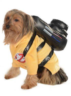 costumes chien halloween