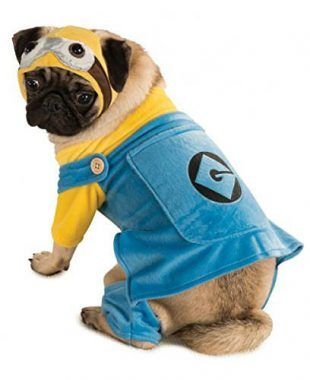 costumes-chien-halloween-8