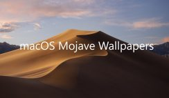 Download macOS Mojave Wallpapers