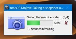 Saving Snapshot