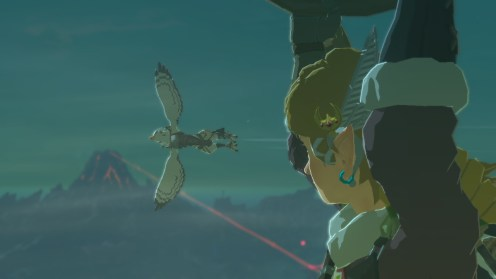 The Legend of Zelda Breath of the Wild Hito