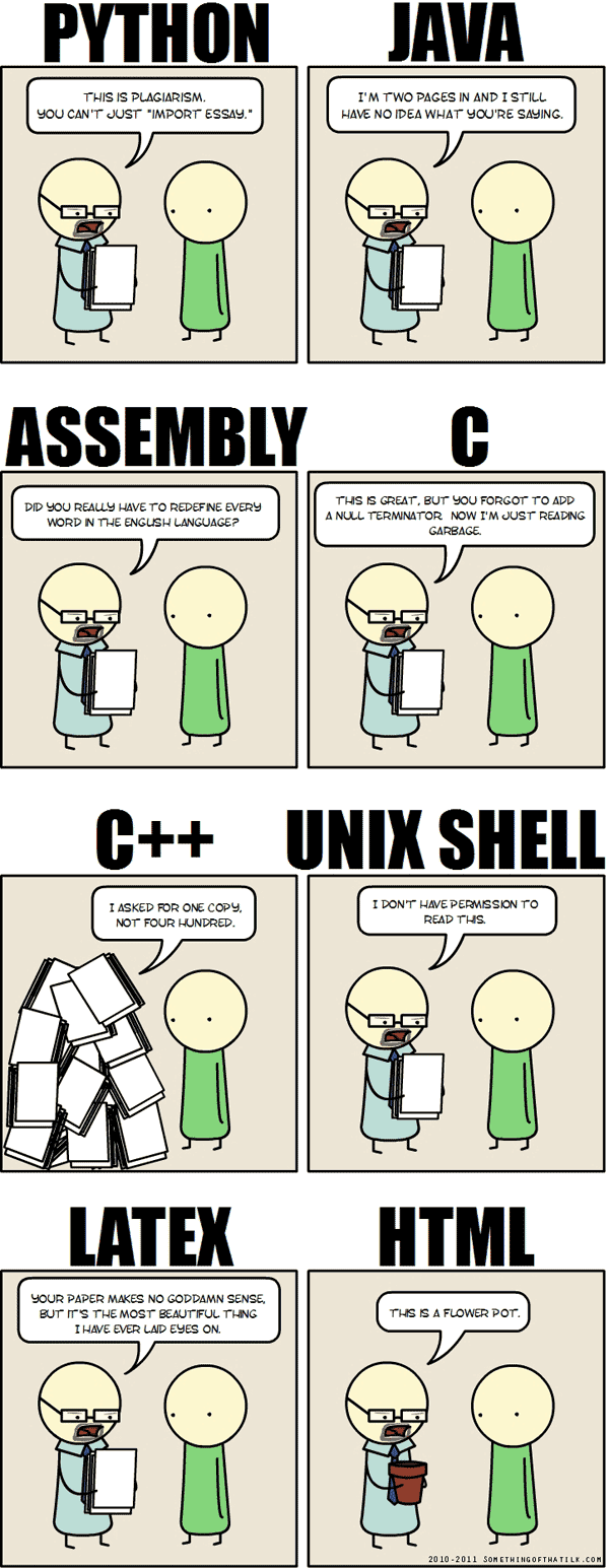 when you write your essays in programming languages comic