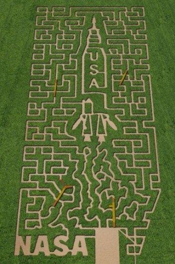 corn-maze-2-385x580