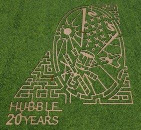 corn-maze-5-liberty-ridge-580x537