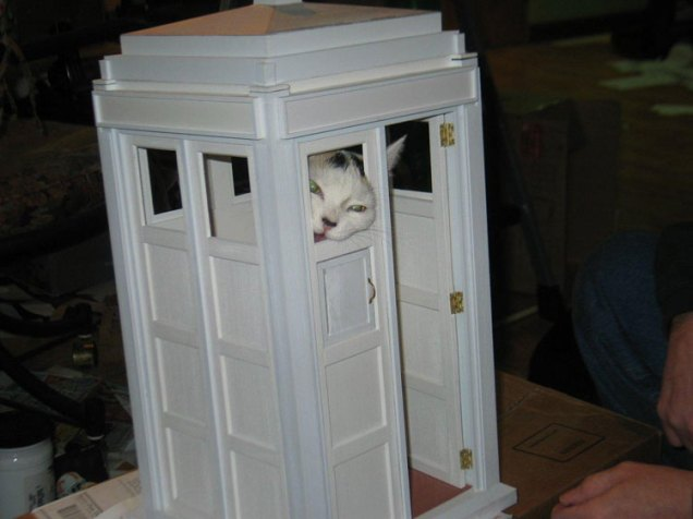 Tardis Cat Fort by astromark