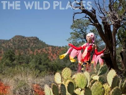 wild-places-1