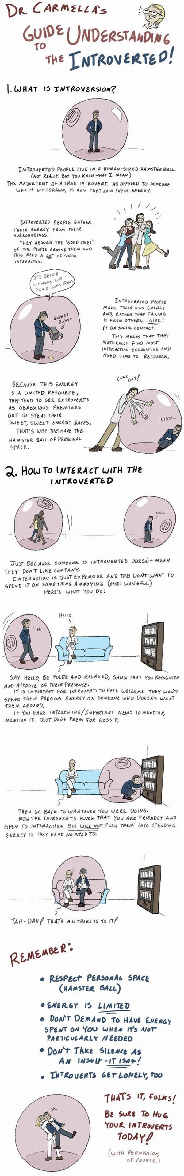 Introversion comic