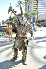 Blizzcon 2013 - Picture by Martin Wong - 1