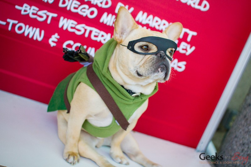 Green Arrow Dog - San Diego Comic-Con 2015 - Photo by Geeks are Sexy
