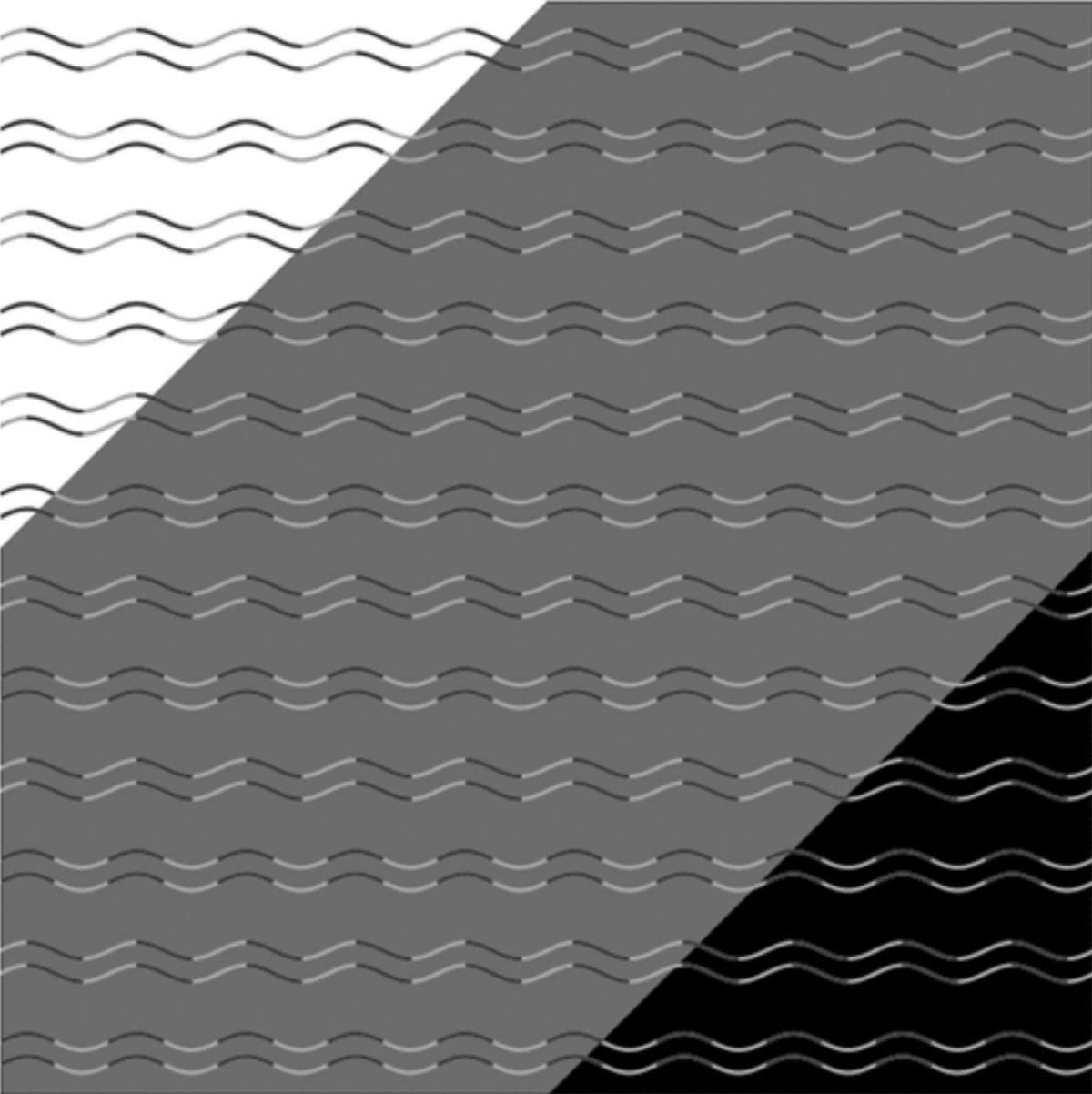 This New Optical Illusion Will Baffle Your Brain!