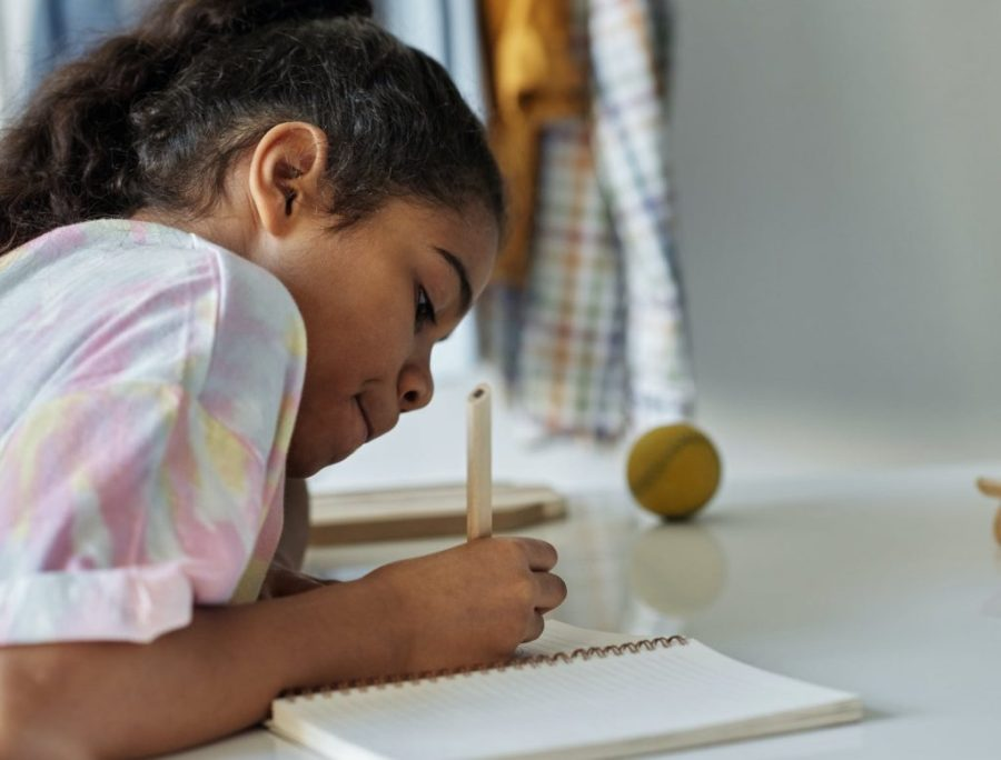 Geek School Tutoring - Where the Smart Children Go!