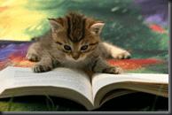 Yep, reading makes everyone smarter