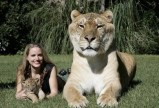 Woman with mamma and baby lion