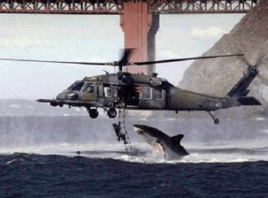 Well-timed photo shows shark about to attack man dangling from helicopter (admittedly, probably a hoax but still cool)