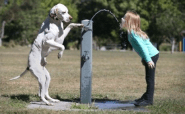 Cute well-timed photo - dog holds water fountain handle while girl drinks