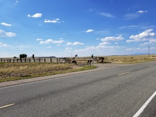 Main entrance to Jeffrey Epstein New Mexico Ranch (home on plateau in distance)