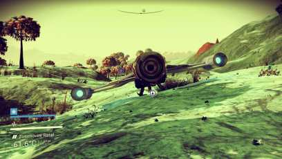 NMS #7