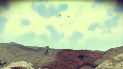 NMS #11