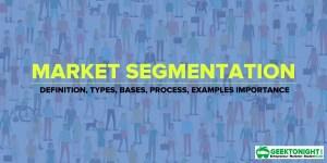 Market Segmentation   Definition, Types, Bases, Examples