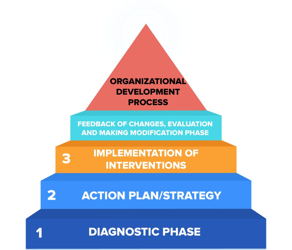 Organizational-Development-Process-Geektonight