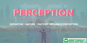Perception | Definition, Nature, Factors Influence Perception