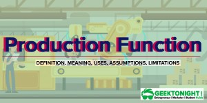 Production Function | Definition, Uses, Assumptions, Limitations