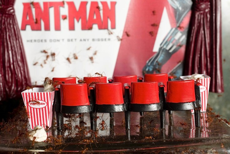 Empire Cinemas commissions the world's first ever ant film premiere for the Leafcutter Exhibition at London Zoo in advance of the release of Marvel Studios' Ant-Man on July 17th 2015.   Screening details here: http://www.empirecinemas.co.uk/synopsis/imax_3d_ant-man/f4555