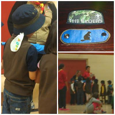 POD: Beaver Scouts Investiture