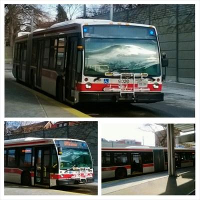 POD: TTC Bus