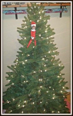 POD: The Prodigal Elf Returns