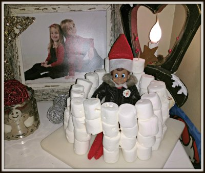 POD: Elf in the Igloo