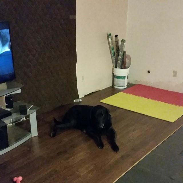 Felicia Floor in Progress