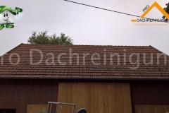 pro dachreinigung458