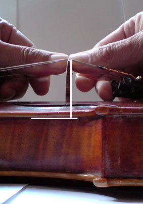 This is how a violin builder places a bridge correctly