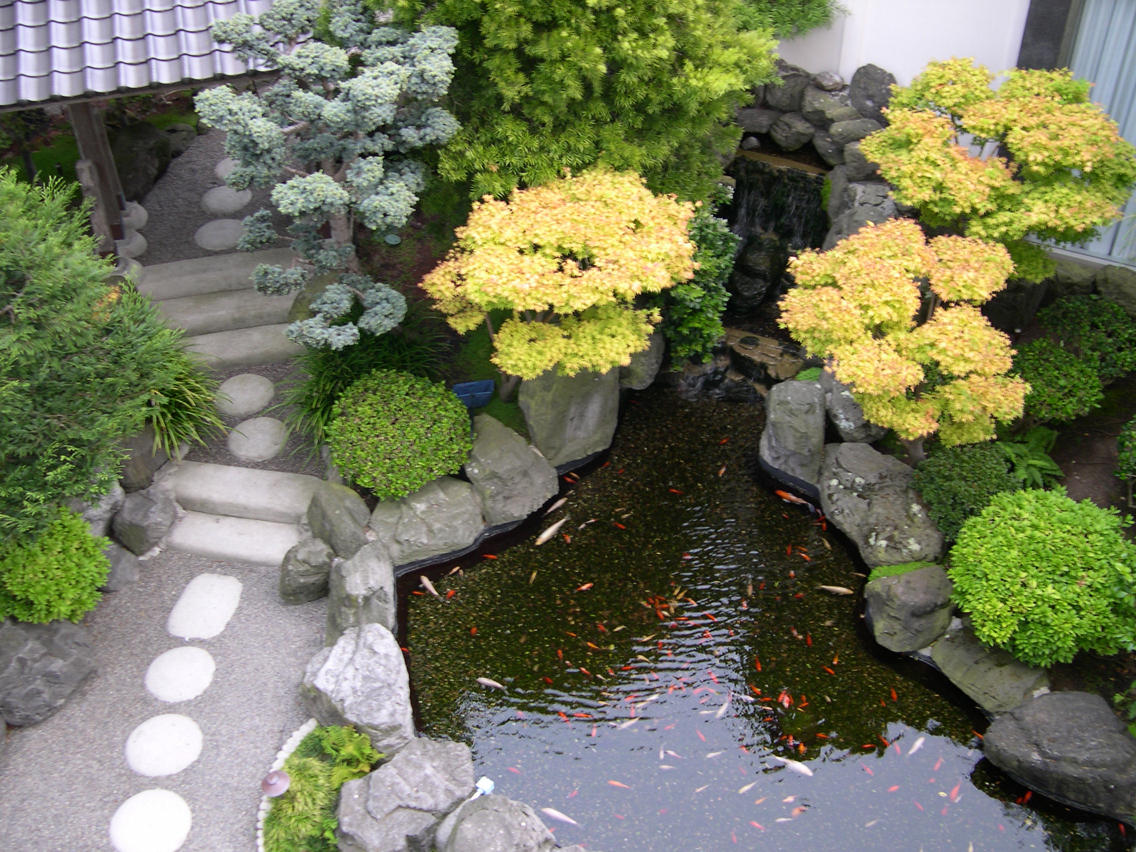 Artificial Pond Structure