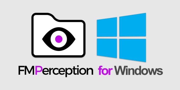 windows filemaker analysis