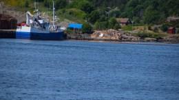 RYGGETABBE: En ryggende tømmerbil på kaia skal ha truffet en dieseltank, som trolig har lekket flere hundre liter rett i sjøen i Tromøysund. Foto: Esben Holm Eskelund