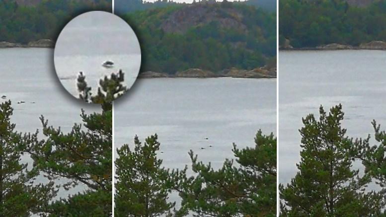 SPEKTAKULÆRT SYN: En stor flokk «delfiner» dro inn i Tromøysund ved Hastensund mandag ettermiddag. Foto: Jan Richard Johnsen/Montasje