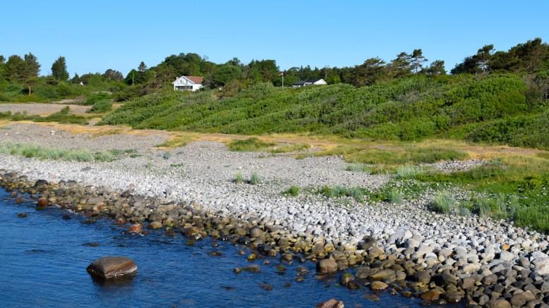 SKJØTSELSPLAN: Raet Nasjonalpark skal søke om penger til skjøtselsplan for Spornes, samt en stor sum penger til storrydding av kratt på Tromlingene og Jerken. Arkivfoto