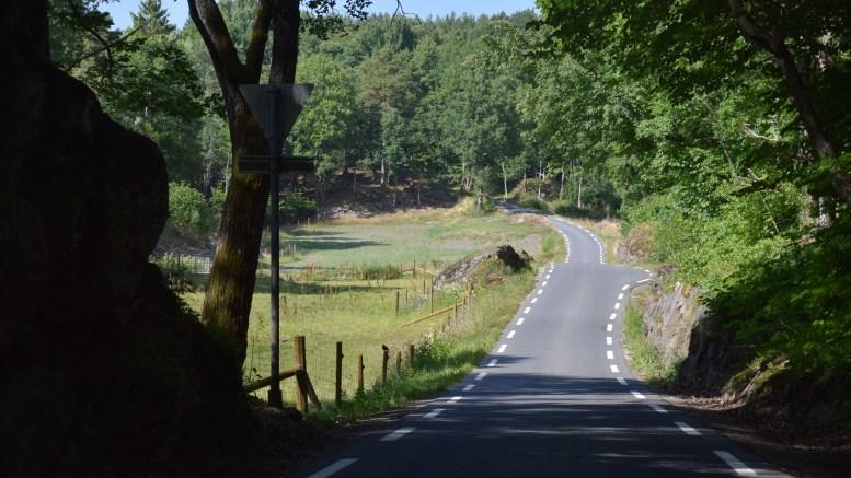 SKOLESKYSS: I et forsøk på å spare penger, ba Arendal kommune om lavere fartsgrense på denne veien. Foto: Esben Holm Eskelund