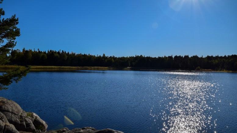 BOTNETJERNA: Kjært vann har mange navn, også dette tilfellet. Foto: Esben Holm Eskelund