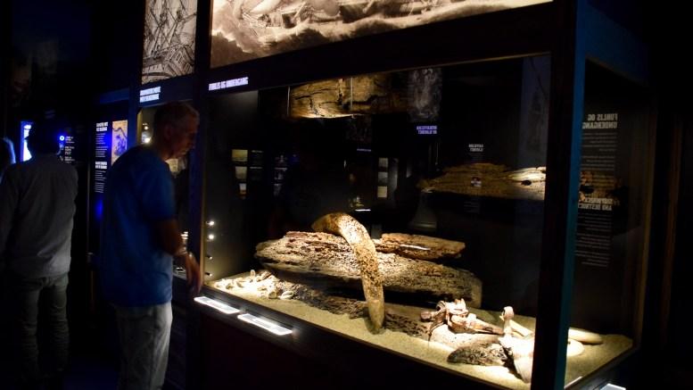 250 ÅR: Lørdag markerer Kuben Arendal at det er 250 år siden Slaveskipet Fredensborg forliste ved Tromøy. Her fra utstillingsåpningen i sommer. Arkivfoto: Esben Holm Eskelund
